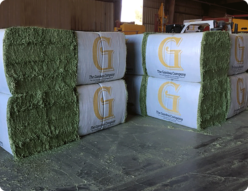 450Kg Natural Press Mag Bale with 16-Cuts from The Gombos Company