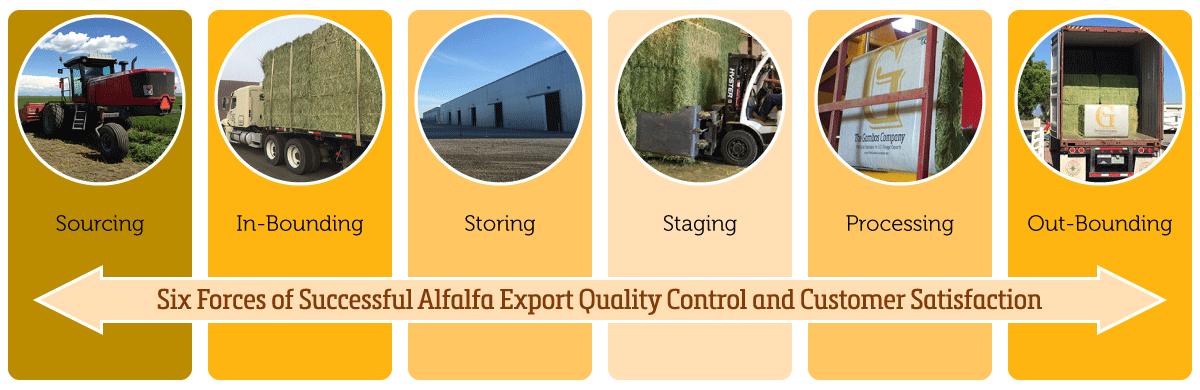 Alfalfa Export Quality Control Six Forces - by The Gombos Company