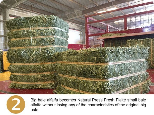 Natural Press Fresh Flake™ Small Bale Alfalfa